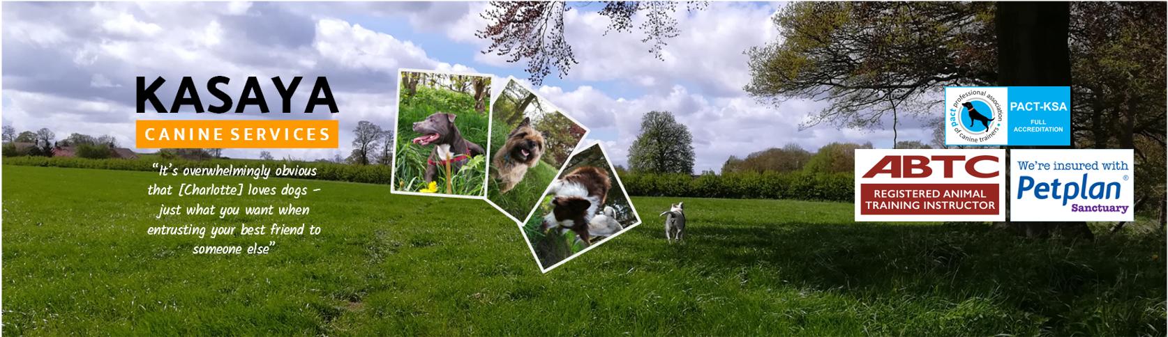 Kasaya Canine Services